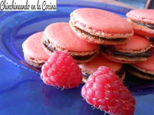 macarons-de-frambuesa-y-chocolate